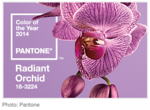 U-Fabulous Pantone 2014 Color of the Year: Radiant Orchid